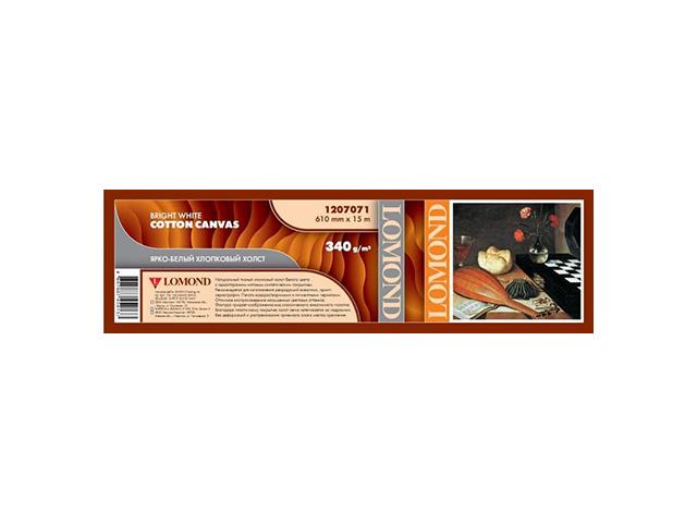 Фото - Холст Lomond хлопковый матовый с роллом 50.8 мм, 340 г/м2, 0.610x15 м гурычева м сравнительно сопоставительная грамматика романских языков итало романская подгруппа