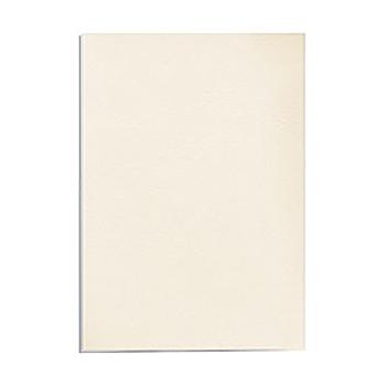 Фото - Обложка картонная Fellowes Delta, Кожа, A3, 250 г/м2, Слоновая кость, 100 шт обложка картонная лен a3 250 г м2 синий 100 шт