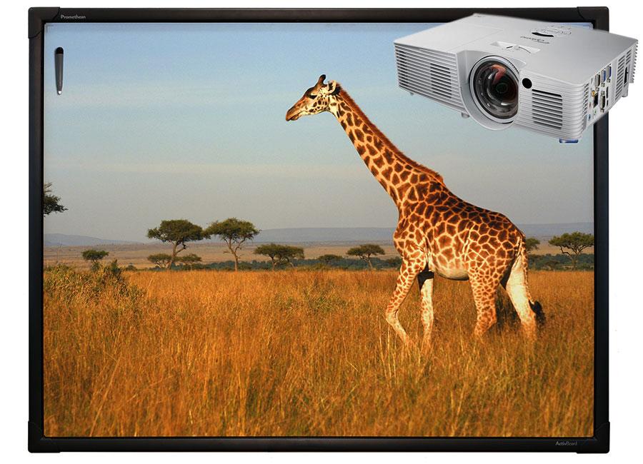 """цена на Интерактивная доска Touch 78"""" 10 касаний, ПО ActivInspire в комплекте с проектором Optoma X316ST и настенным креплением"""