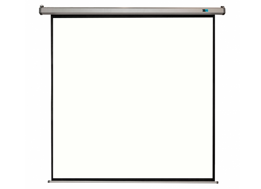 Cinema Motoscreen FG Pro 167 300x300 см (серый корпус)