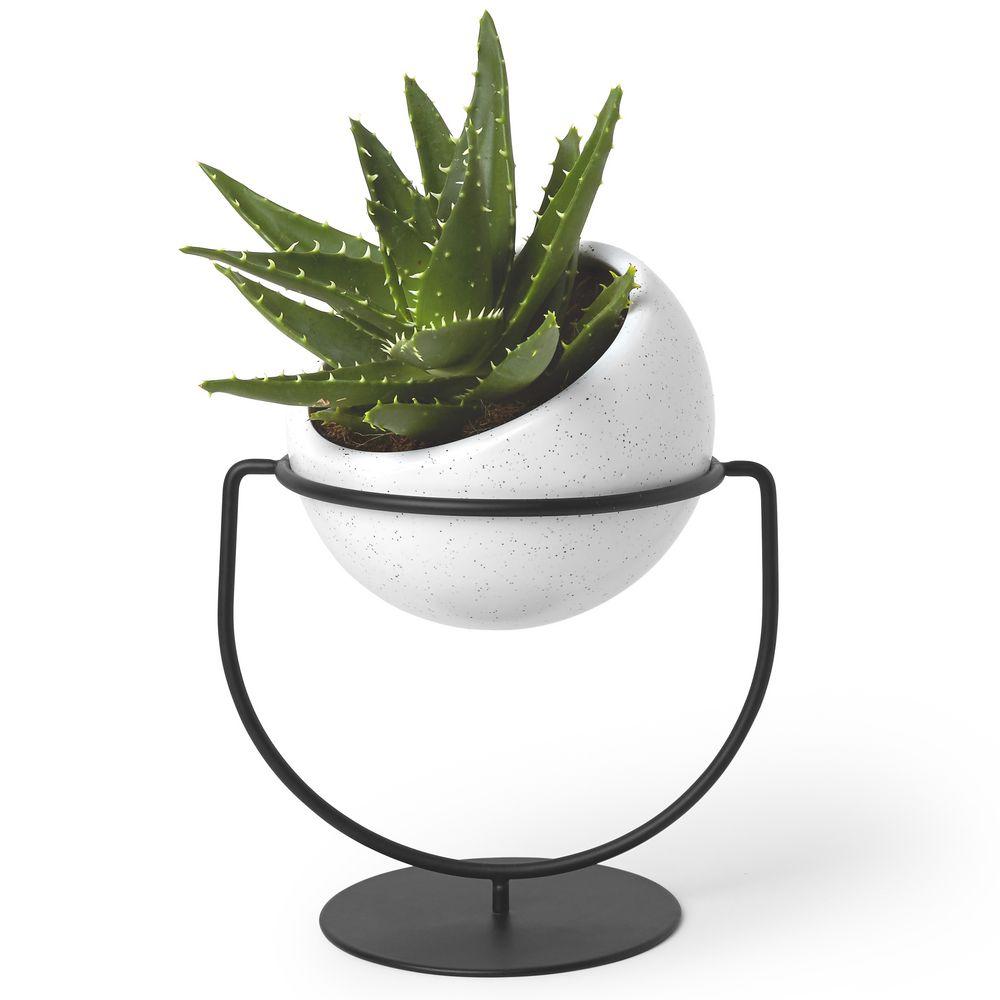 Кашпо для растений настольное Nesta фото