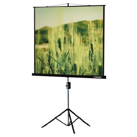 Проекционный экран Lumien Master View 203x203 см Matte White FiberGlass (LMV-100109) фото