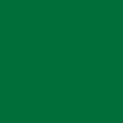 Транслюцентная плоттерная пленка Oracal 8500 F068 Grass Green 1x50 м фото