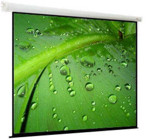 Breston 203x203 (1:1) (EBR-1104) экраны для проекторов viewscreen breston 4 3 203 153 195 145 mw