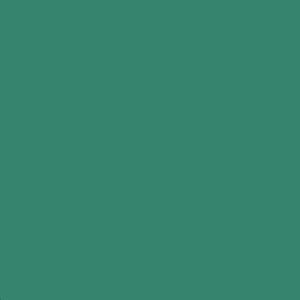 Пленка для термопереноса на ткань Poli-Flex Premium Green 404 цена
