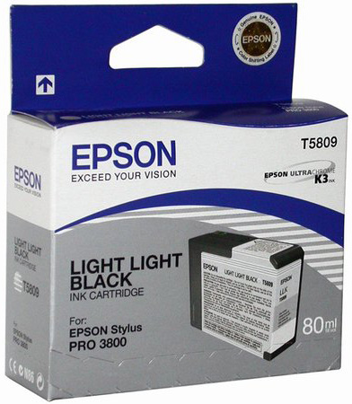 Фото - Epson T5809 Light Light Black 80 мл (C13T580900) led light string for mirror bathroom aisle