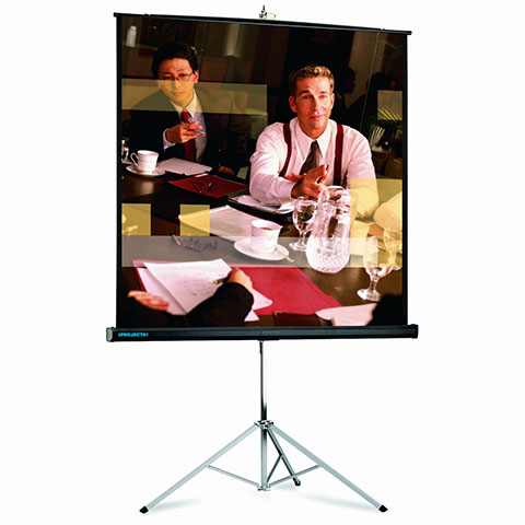 Projecta Picture King 244x244 Matte White (10430015)