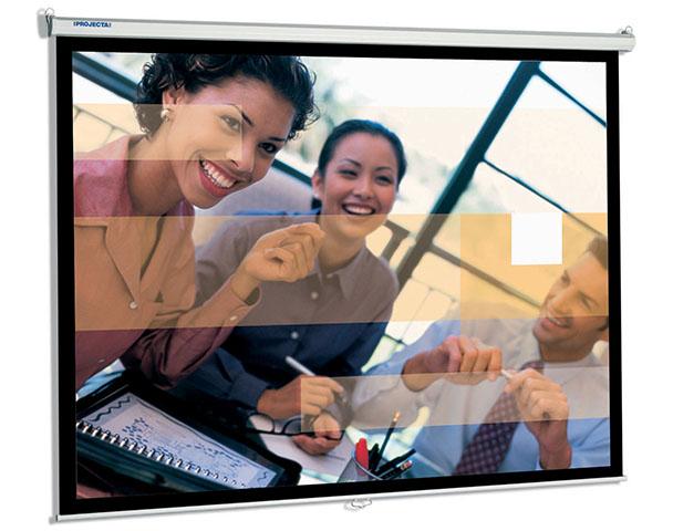 Фото - Projecta SlimScreen 138x180 Matte White (10200070) projecta slimscreen 180x102 matte white 10200081